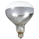 Brooder Clear Heat Lamp Bulb