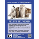 Feline Leukemia Test@Home Kit