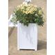Burlingham Arena Flower Box