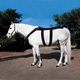 Ice Horse Equine Back Blanket