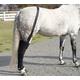 Ice Horse Full Hind Leg Wraps-Pair