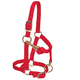 Weaver Mini Adj Nylon Halter Brass