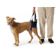 Walkabout Back Pet Harness
