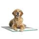 Pet Therapeutics MagnaPetic Relief Pet Pad