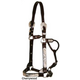 Circle Y Silver Raised Floral Show Halter Hrse Ant