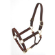Royal King Leather Stable/Grooming Halter