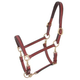 Royal King Leather 4-Way Stable/Grooming Halter