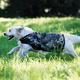 Rambo Camoflauge Dog Blanket