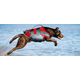 Helios Splash Dog Harness/LifeJacket