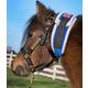 Ozark Premium Mini/Pony Throatlatch Sweat