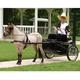 Ozark Mini/Pony Show Harness