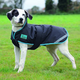Shires Tempest Plus Waterproof Dog Coat