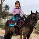Big Horn Double Skirt Pony Saddle