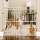 Carlson Pet Big Tuffy Expandable Gate w/ Pet Door