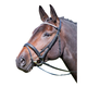 Shires Avingnon New York Bridle