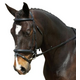 Collegiate Comfort Crown Padded Crank Bridle Warm