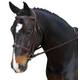 Collegiate Comfort Crown Ultra Raised Bridle Warm