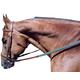 Tory Leather Padded Flat Bridle Horse Oakbark/Grn