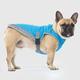 Canada Pooch Aqua Dog Cooling Vest