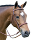 Pessoa Fancy Wide Padded Show Bridle Oversize
