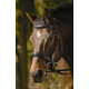 HDR Raised Padded Dressage Bridle Oversize