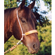 Martin Leather Covered Double Rope Noseband