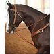 Martin German Martingale with Roping Reins