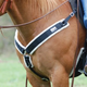 Cashel Nylon Fleece Lined Straight Breast Collar