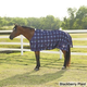 Saxon 1200D Turnout Blanket 250g 84 Blackbry