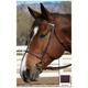 Collegiate Plain Raised Bridle Quarter Horse Black