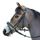 Wintec Flash Bridle Without Reins Horse Brown