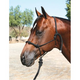 Professionals Choice Clinician Rope Halter