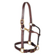 Weaver Adj Leather Halter w/ Snap Average