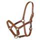 Tory Safety Rivet Foal Leather Halter with Snap