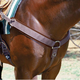 Professionals Choice SMx Breast Collar Brown