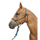 Professionals Choice Rope Halter w/Lead Purple/Tur