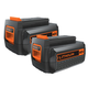 Black & Decker LBXR36-2 40V Lithium-Ion Battery (2-Pack)
