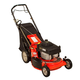 Ariens 911193 Classic Series 179cc Gas 21 in. 3-in-1 Self-Propelled Walk Behind Lawn Mower
