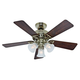 Hunter 53080 42 in. Beacon Hill Bright Brass Finish Ceiling Fan with Light