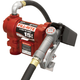 Fill-Rite FR1210G 12V 15 GPM Pump with 12 ft. Hose