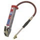 Branick 60-0243 Heavy-Duty Tire Inflator