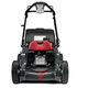 Honda 662300 21 in. GCV200 4-in-1 Versamow System Walk Behind Mower with Clip Director & MicroCut Twin Blades