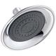 Delta RP61181 Single-Setting Raincan Shower Head (Chrome)