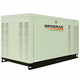 Generac QT02515JNSX Guardian Series Liquid-Cooled 1.5L 25kW 120/240V 3-Phase Natural Gas Steel Generator (CARB)
