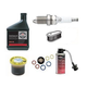 Briggs & Stratton 6221 Intek Pressure Washer Tune-Up Kit