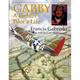 Gabby A Fighter Pilot's Life Book
