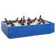 Countertop Beverage Chiller - 48 Quarts - Blue