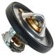 MPEMX00013-Thermostat & Gasket