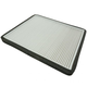 1ACAF00079-Cabin Air Filter