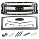 FDBGK00002-2013-14 Ford F150 Truck Grille  Ford OEM CL3Z-8213-A  DL3Z-8200-CPTM